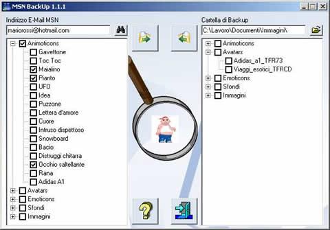 MSN BackUp