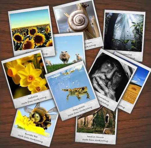 Polaroid Gallery v.1.01