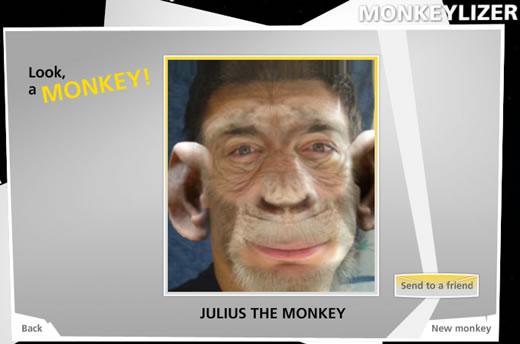 julius_scimmia.jpg